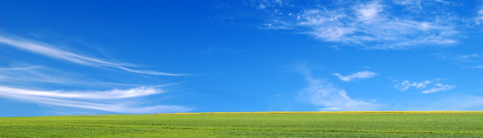 Pradera con cielo azul
