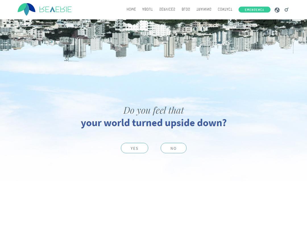 Diseño de Website